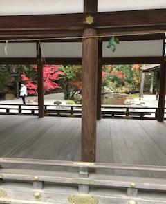 早朝の上賀茂神社・・・今日も空気は乾燥しています。